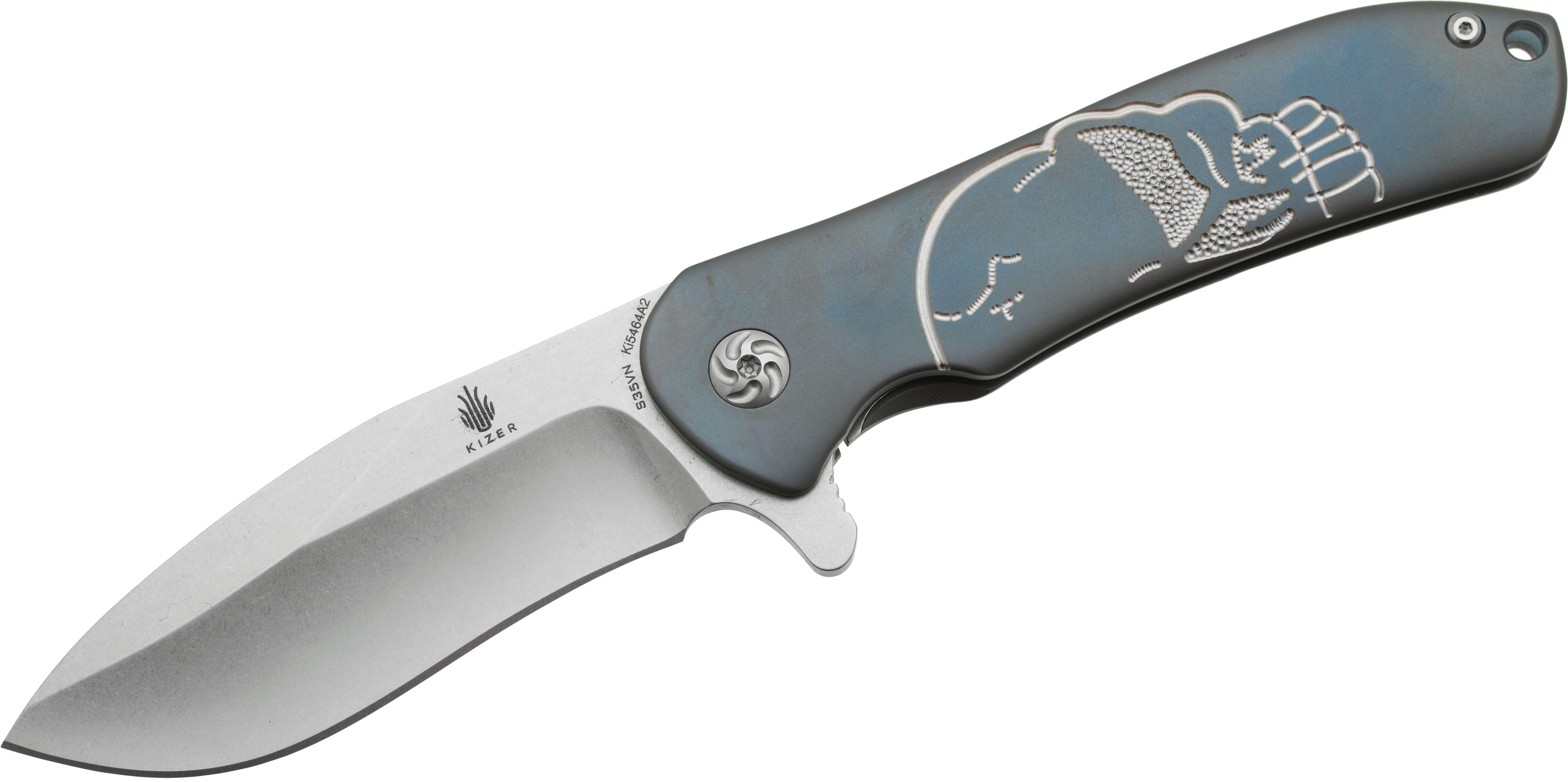 Kizer Cutlery Ki5464A2 Matt Cucchiara Hustler Skull Flipper 3.6 inch S35VN Stonewashed Blade, Blue Engraved Titanium Handles